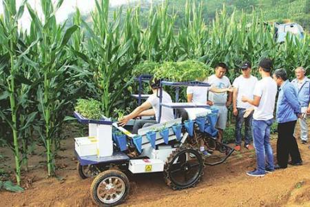 """打造低碳农机 枣庄市农机部门有""""三招"""""""