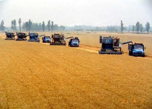国务院常务会议:进一步推进农业发展