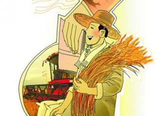 """从女""""海归""""到 开拖拉机的职业农民"""