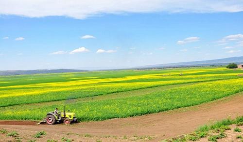 福建省已全面完成永久基本农田划定任务