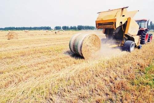 河南中旗农机——水稻收割打捆演示