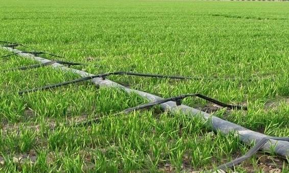 伊州区 高效节水灌溉设备为农民谋福利