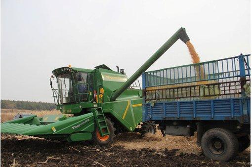 而从各大玉米收获机生产企业看,除山东常林,青岛九方泰禾等少数企业的