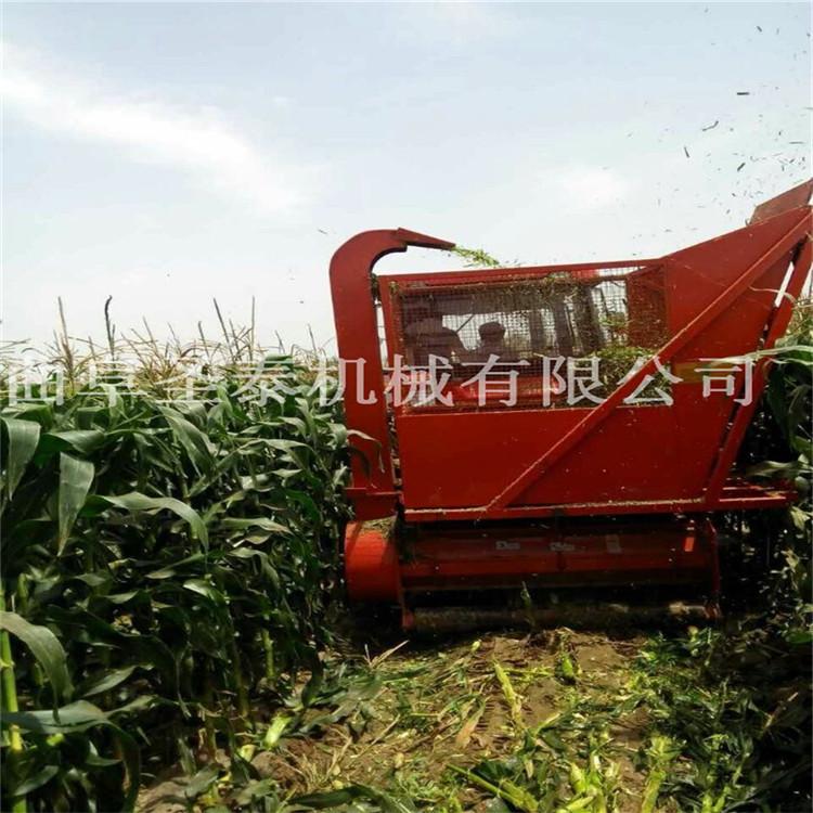玉米秸秆青贮收集机,自动化秸秆青储回收机
